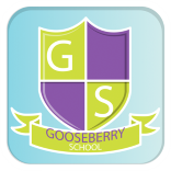 Stella James - Founder Gooseberry Planet